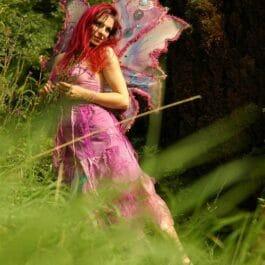 Fairy Children's Entertainer