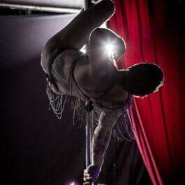 Male Pole Dancer
